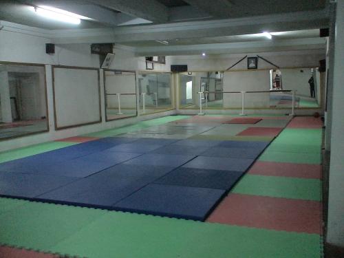 salle de l'ariana 3.JPG