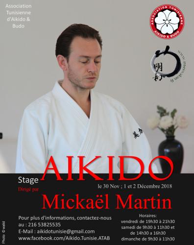 aikido,mahdia,estonie,mickael martin,tallinn,plage,stage