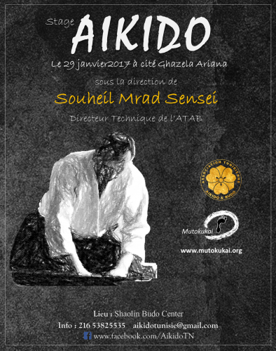 aikido,stephane benedetti,mutokukai,diminique pierre,ariana,bizerte,aikikai,wing chun,yogatherapie,yoga