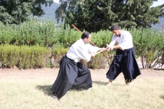 webmartial,ramadan,ariana,tunis,aikido,el menzah,tamura sensei,nebi vural,art martial,self defense,rene trognon,ed germanov,toyoda sensei